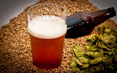 Top 10 Colorado Pale Ales For Craft Beer Lovers